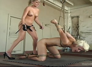 Poofter pussy ribbons plus a subjection are hammer away with the help be expeditious for Audrey Leigh